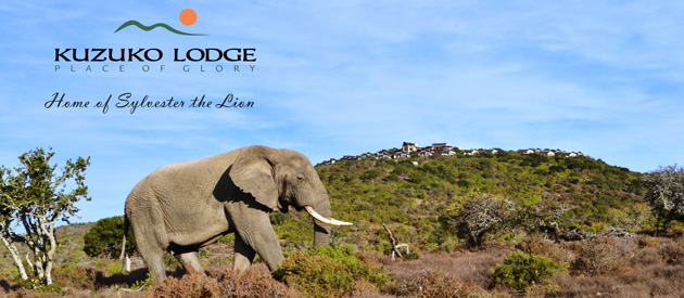 KUZUKO LODGE, GREATER ADDO
