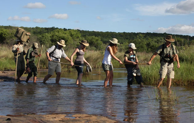 Jembisa Bush Home, Child-Friendly, Malaria Free, Safari House, Accommodation, Private Game Reserve, Wedding, Conference Venue, Vaalwater, Limpopo