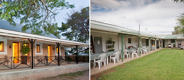 route 62, accommodation, farm stall, R62 farm, restaurant, self catering, bella de karoo
