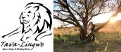 TAVA LINGWE GAME LODGE & WEDDING VENUE
